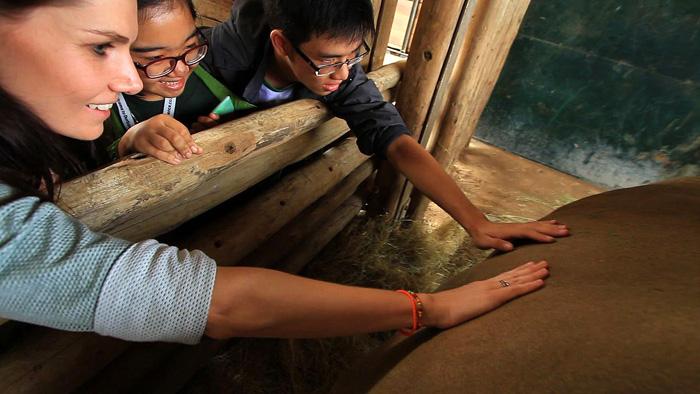 vietnamese-kids-rhino-youth-summit